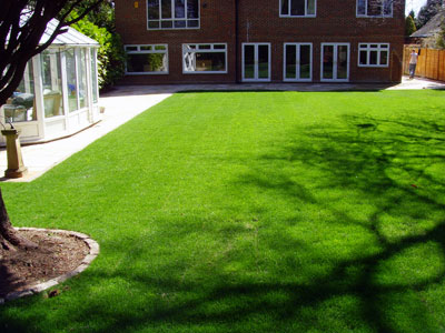 Landscape contractor in Croydon